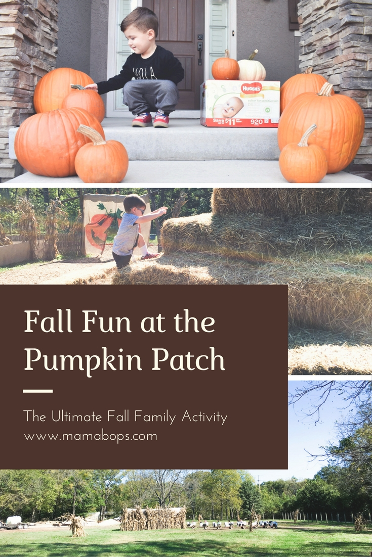 Fall Family Fun at Pumpkin Patch