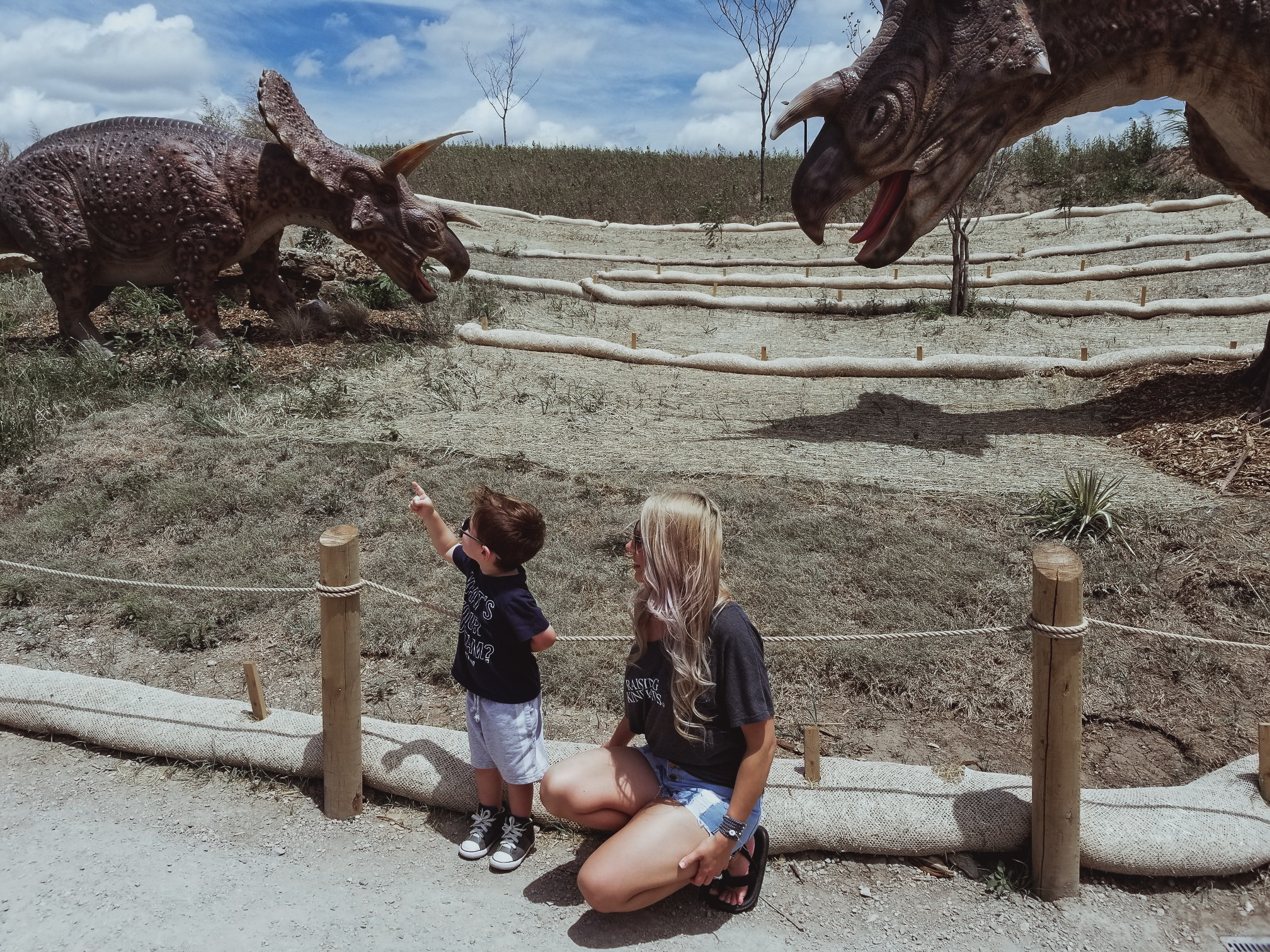 This place looks amazing! Field Station Dinosaurs is perfect if you're looking for family activities in Wichita, KS. This dinosaur park is one of the most popular kid-friendly activities in Derby, Kansas. Here's a real mom's review of Field Station Dinosaurs, so you can decide if it's worth the trip for your family.