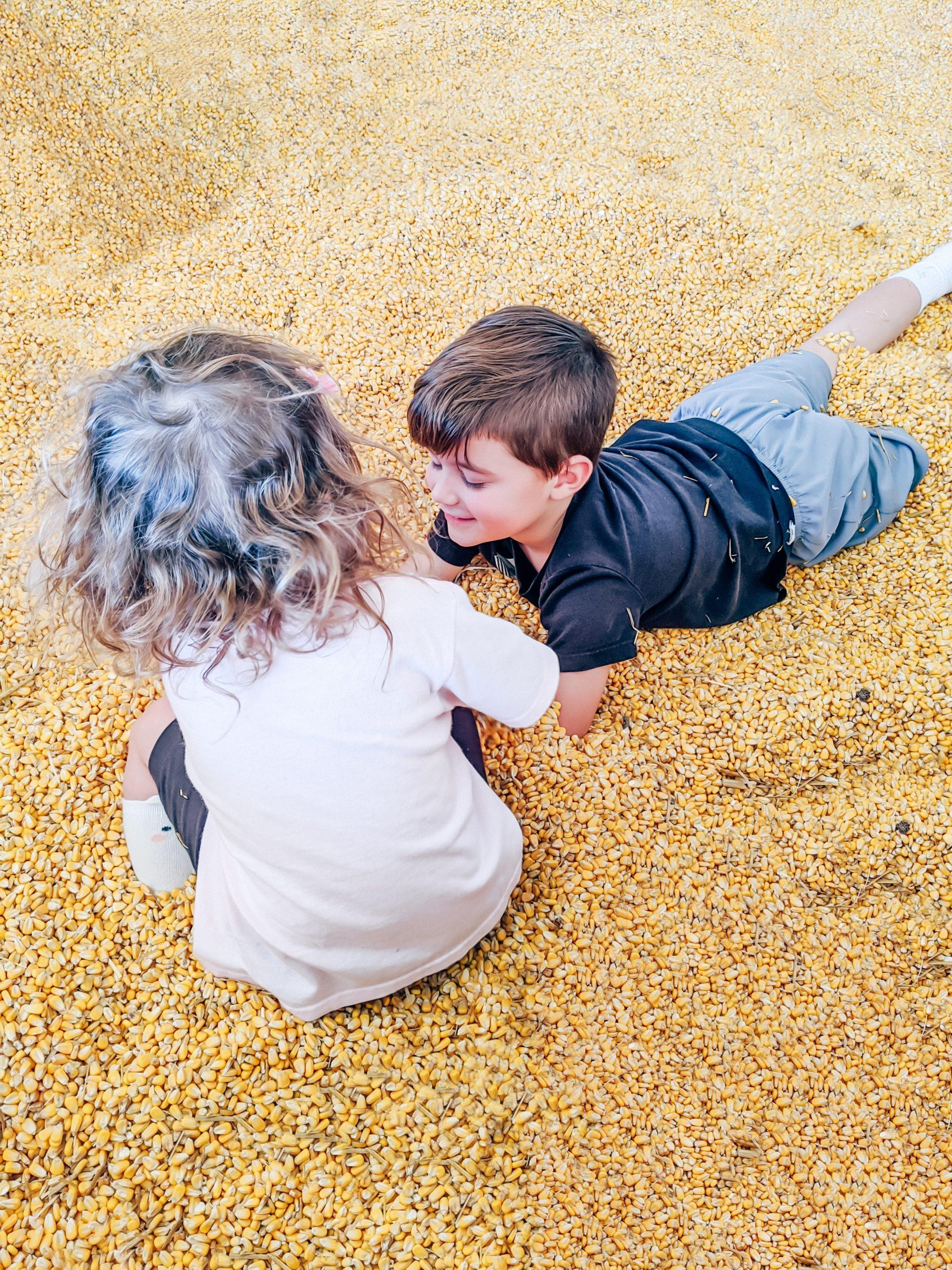 Fun Farm Pumpkin Patch Kearney MO Reviews - Fun Farm Kearney Missouri - Fun Farm Reviews Kearney - Pumpkin Patch Kansas City - Best Pumpkin Patch in Kansas City - Missouri Pumpkin Patches - A detailed review of Fun Farm Pumpkin Patch in Kearney, MO with lots of photos! #kearney #funfarm #pumpkinpatch #pumpkinpatches #kansascity